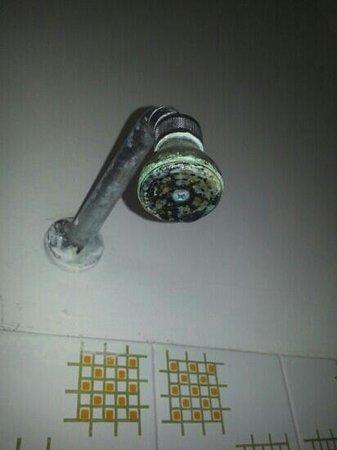 Марабелло, Италия: soffione della doccia