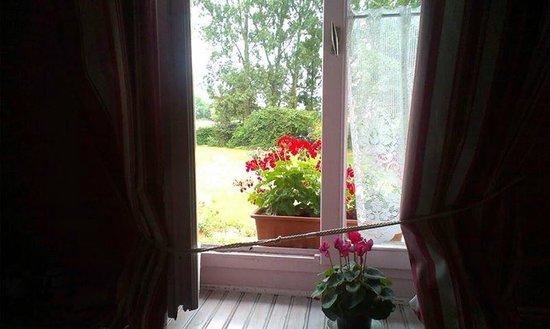 Au Cheval Noir : Fuchsia room window