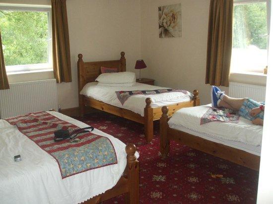 Hunters Lodge Inn: our room