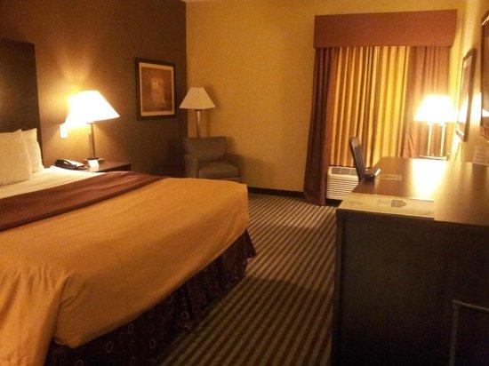 La Quinta Inn & Suites Houston Energy Corridor : Standard Room