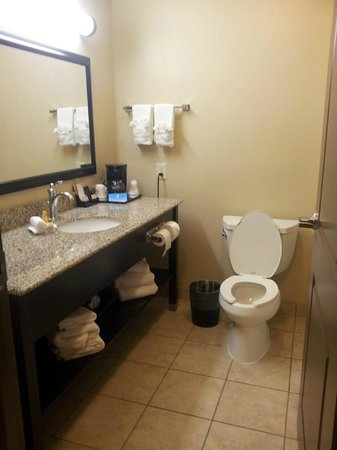 La Quinta Inn & Suites Houston Energy Corridor: Bathroom