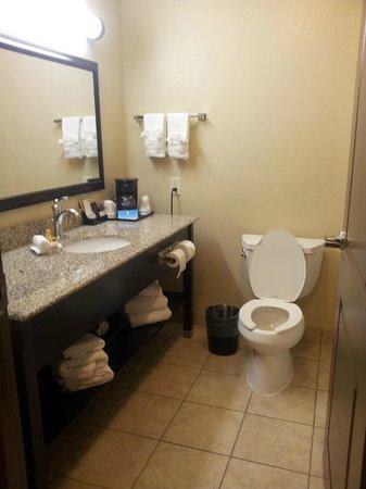 La Quinta Inn & Suites Houston Energy Corridor : Bathroom