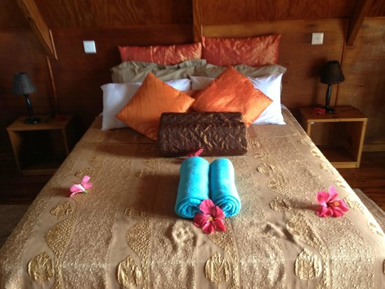 Mango Lodge: Une chambre toute mignonne