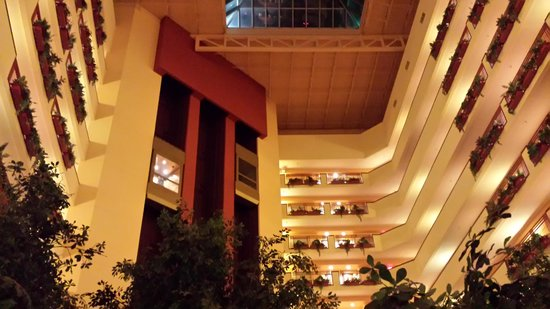 Embassy Suites by Hilton Albuquerque - Hotel & Spa : looking up from atrium