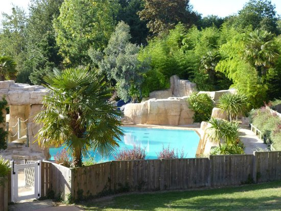 Chateau des Ormes : Overlooking one of the pools.