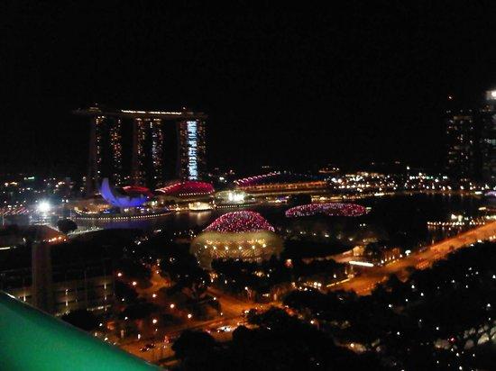 Fairmont Singapore: Great View