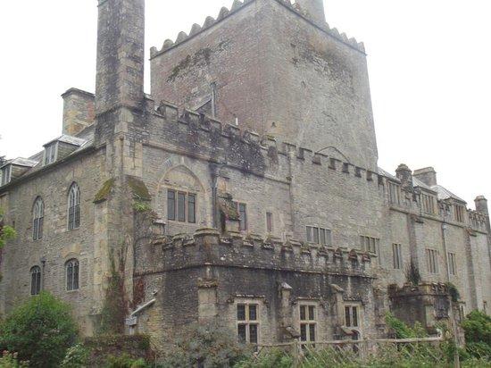 Buckland Abbey: Love the stonework
