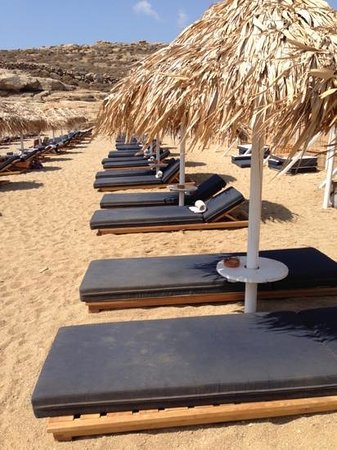 Lia Beach : Beach beds