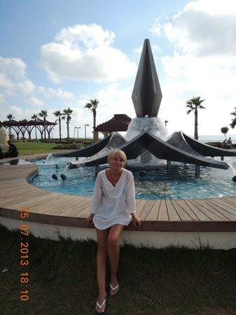 Park Hotel Netanya : фонтан недалеко от отеля
