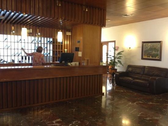 Hotel Vianetto : reccepcion