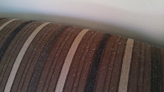 Holiday Inn Niagara Falls - By The Falls : Disgusting dust and dander on back of sofa.