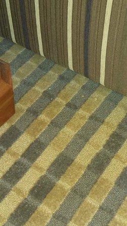 Holiday Inn Niagara Falls - By The Falls : Debris, food on carpet.