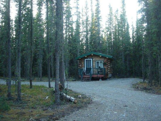 Caribou Cabins: Le chalet n° 5