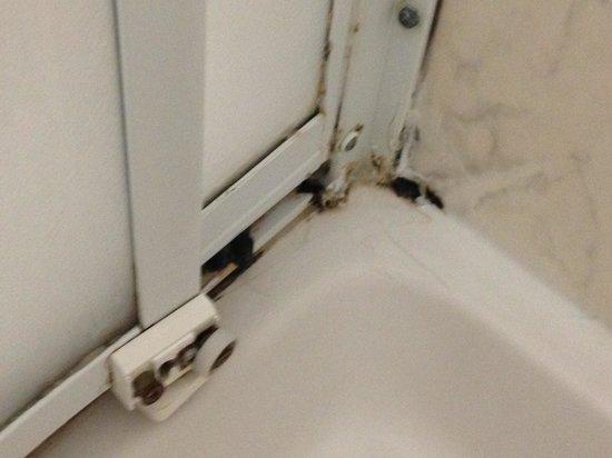 Doccia con muffa foto di maremonti gabicce mare - Muffa nella doccia ...