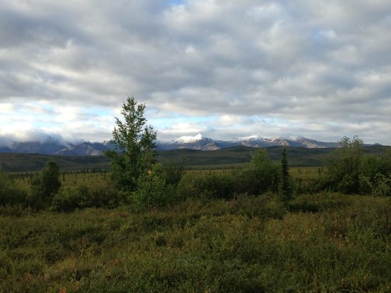 EarthSong Lodge - Denali's Natural Retreat : View from porch