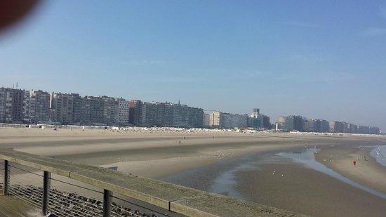 Beach Palace Hotel : Strand