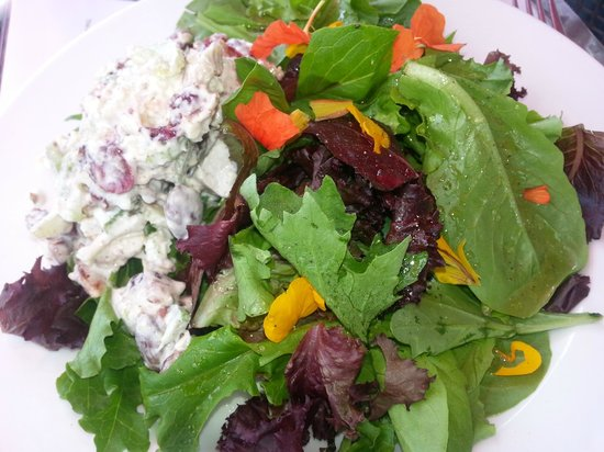 The Garden Cafe at Pond Hill Farm: Chicken salad with fresh mixed greens