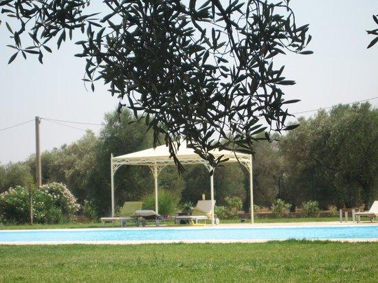 Masseria Corda di Lana Hotel & Resort : Zona piscine