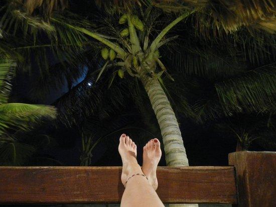 Ramon's Village Resort: Super Moon peeking from behind palm