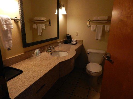 Sleep Inn & Suites Shepherdsville : Vanity area