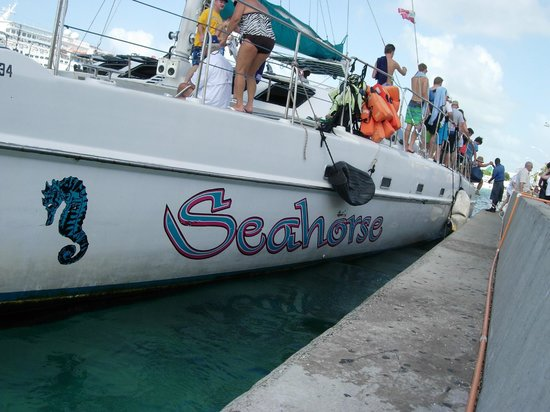 Seahorse Sail and Snorkel Adventure: Shot of the boat with guests exiting.