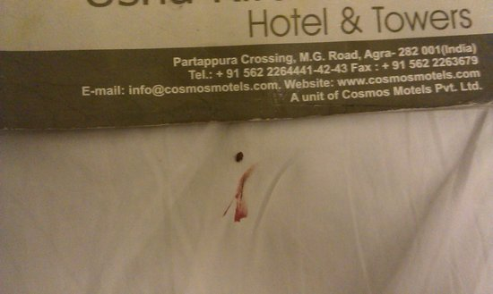 Usha Kiran Palace Hotel & Tower: bedbug killed by me