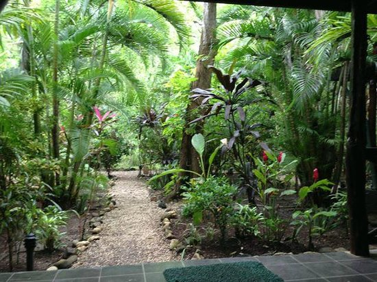 Hotel Tropico Latino: This is the view from our large veranda!