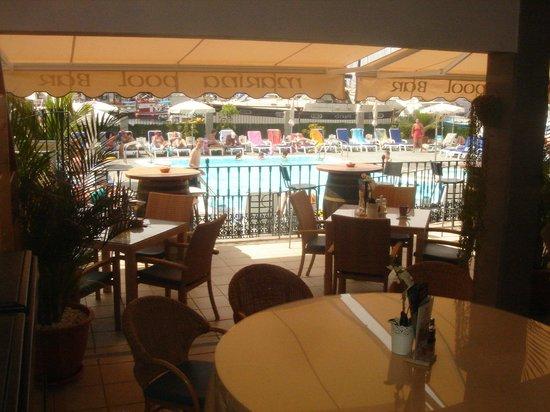 Marina Pool Bar Restaurant: A tranquil corner of the bar