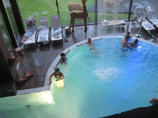 Hotel Zubrowka: piscina con idromassaggio