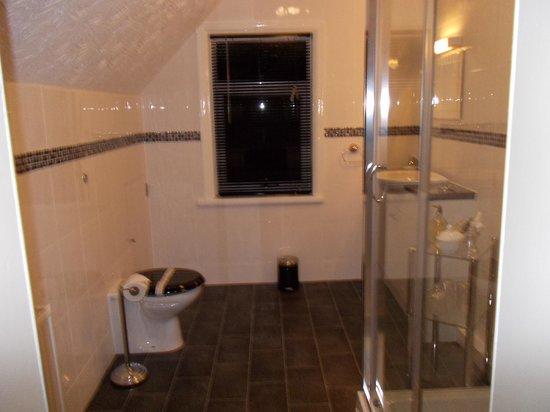 Kildare Hotel: large deluxe en-suite top floor room
