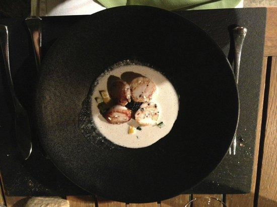 Le Mas des Aigras : coquille saint Jacques avec sa crème