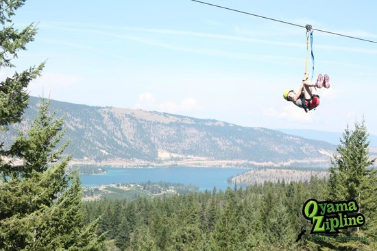 Oyama Zipline Adventure Park: What a thrill!  What a view!