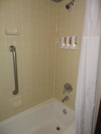 Drury Inn & Suites San Antonio Riverwalk: Shower