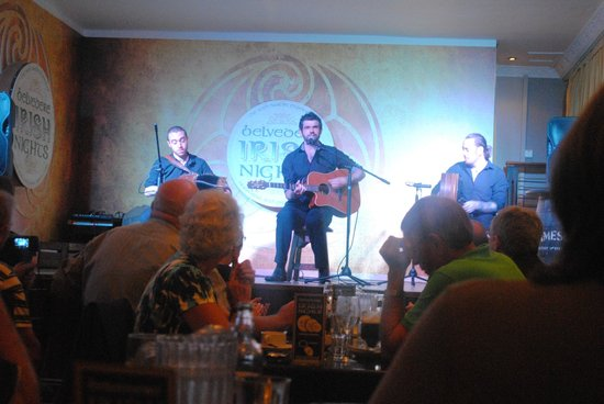 Belvedere Irish Night: The musicians