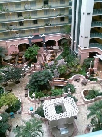 Embassy Suites by Hilton Fort Lauderdale 17th Street: from the 7th floor down