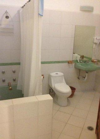 Casa Comtesse : bathroom in El Oriente room