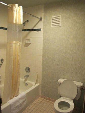 Yosemite Southgate Hotel & Suites: Baño