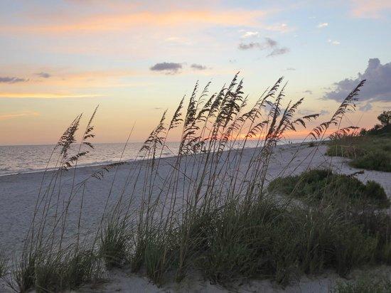 Mitchell's Sandcastles: Gorgeous Scenery