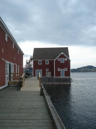 Trinity Historical Walking Tours: Rising Tide Theatre on the wharf