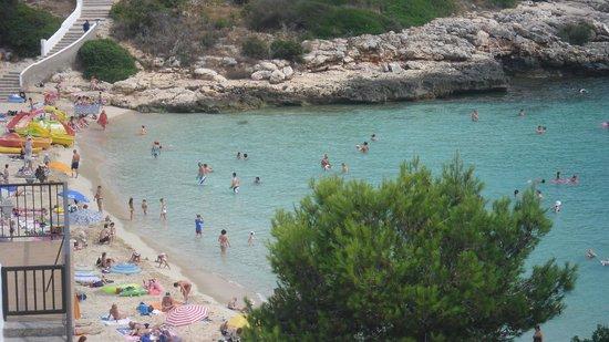 OLA Aparthotel Cecilia: cala marsal beach
