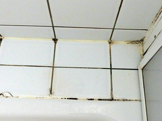 Hunguest Hotel Millennium: Schimmel in der Dusche