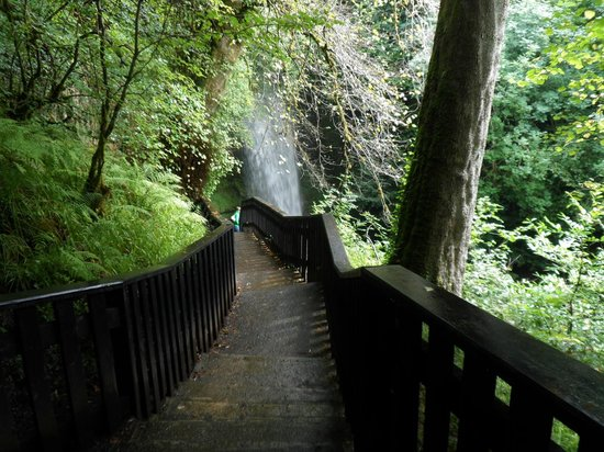 Glencar Waterfall : View of Waterfall from top of wooden steps. (optional route)