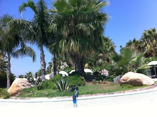 Acacia Resort Parco dei Leoni: Un coin de rêve ombragé dans la piscine même