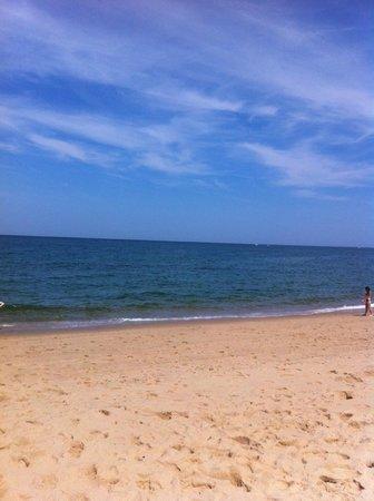 Race Point Beach : Quiet peaceful beach
