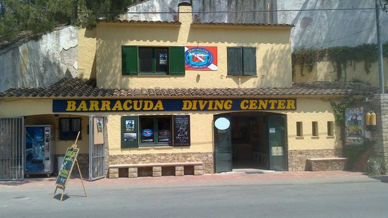 ‪Barracuda Diving School‬
