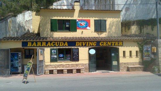 Escuela de buceo Barracuda