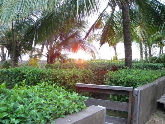Tortuga del Mar: por do sol visto do hotel