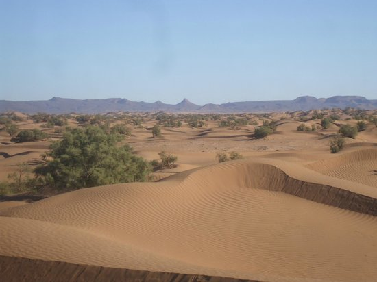 Discovering South Morocco