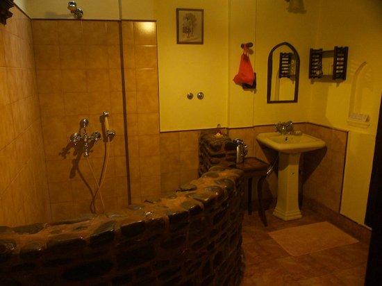Ahilya Fort: Bathroom