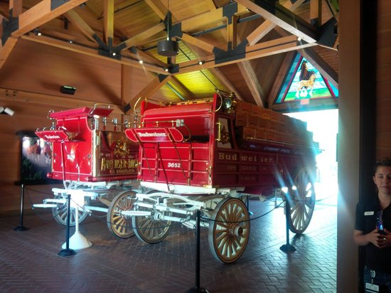 Budweiser Brewery Tours: Stables